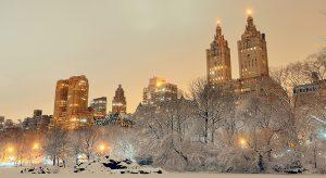 Central Park im Winter (Bigstock.com / Songquan Deng)