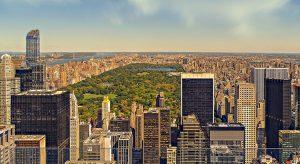 Central Park (F: Pixabay Walkerssk)