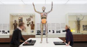 "Ausstellung ""Abenteuer Mensch"" im Hygiene-Museum (Foto @ Jörg Gläscher)"