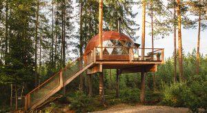Treehouse Dome in Norwegen / Baumhäuser in Norwegen / Reisekompass (Foto: Kristine Elvemo, beigestellt)