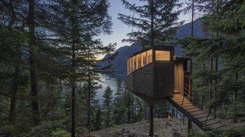 Woodnest Baumhäuser in Norwegen / Reisekompass / Foto: Sindre Ellingsen, beigestellt