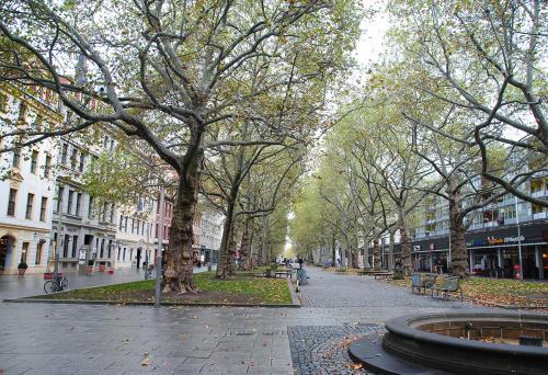 Die idyllische Hauptstrasse in Dresdens Stadtteil Neustadt © Reisekompass